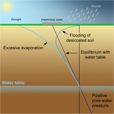 What Is The Nature Of The Water Table